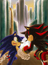sonadow_run_together_by_maruringo.jpg